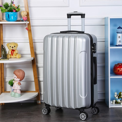 Protective Travel Hand Carry Hard Case Luggage - Silver