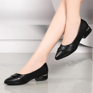 Short Heel Pointed Toe Work Office Flats - Black